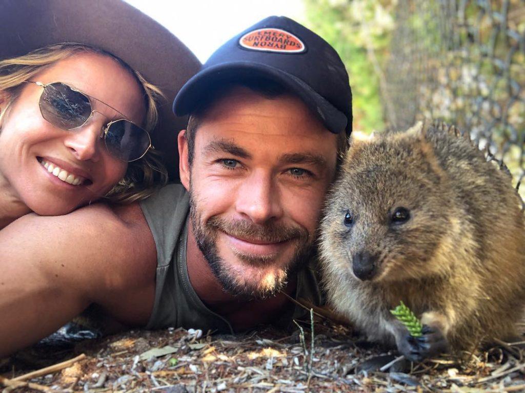 Киноактер Крис Хемсворт, его жена Эльза Патаки и коала.